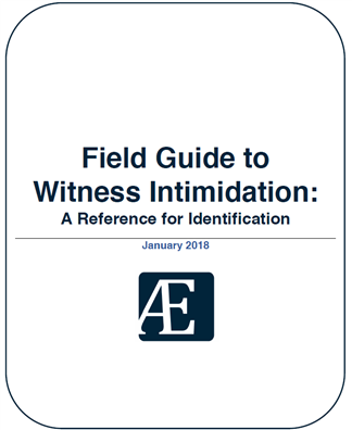 Image for Field Guide to Witness Intimidation: A Reference for Identification