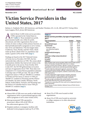 Image for Statistical Brief: Victim Service Providers in the United States, 2017