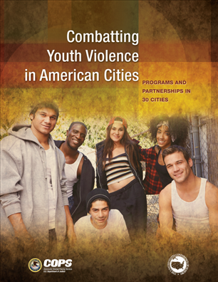 Image for Combatting Youth Violence in American Cities