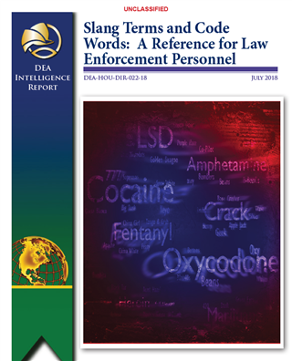 Image for Slang Terms and Code Words: A Reference for Law Enforcement Personnel