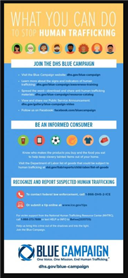 Image for DHS: Stop Human Trafficking Infographic
