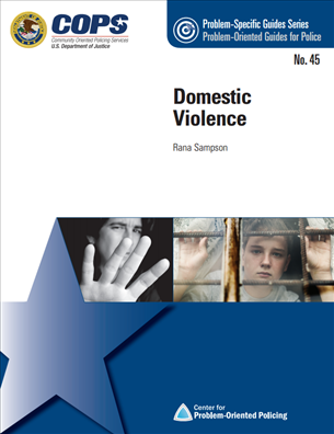 Image for Domestic Violence