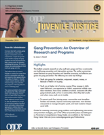 Image for Gang Prevention: An Overview of Research and Programs