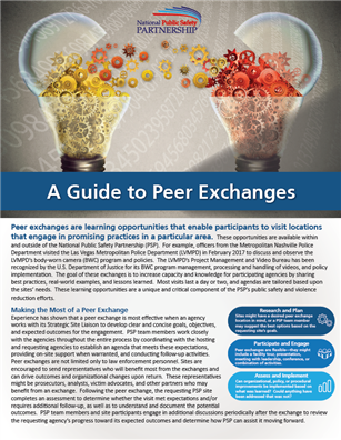 Image for A Guide to Peer Exchanges