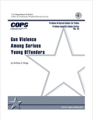 Image for Gun Violence Among Serious Young Offenders