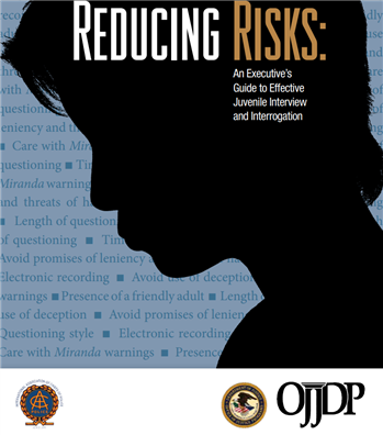 Image for Reducing Risks: An Executive's Guide to Effective Juvenile Interview and Interrogation