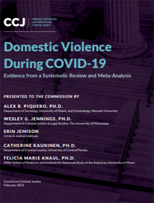 Image for Domestic Violence During COVID-19