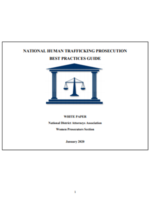 Image for National Human Trafficking Prosecution Best Practices Guide