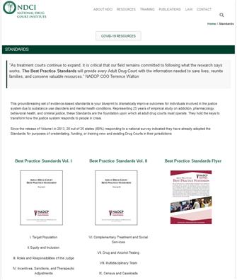 Image for National Drug Court Institute Best Practice Standards