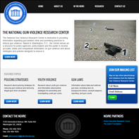 Image for National Gun Violence Research Center