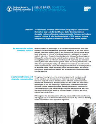 Image for National Network for Safe Communities Issue Brief:  Domestic Violence Intervention