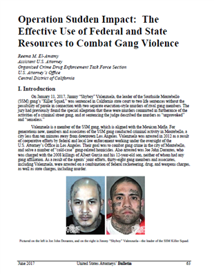 Image for Operation Sudden Impact: The Effective Use of Federal and State Resources to Combat Gang Violence