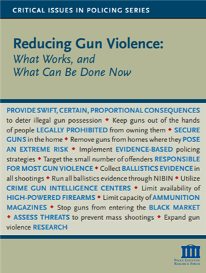 Image for Reducing Gun Violence: What Works and What Can Be Done Now