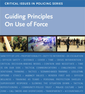 Image for Critical Issues in Policing Series: Guiding Principles On Use of Force