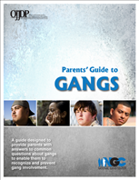 Image for Parents' Guide to Gangs