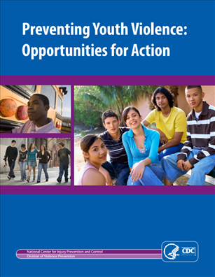 Image for Preventing Youth Violence: Opportunities for Action