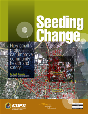 Image for Seeding Change:  How Small Projects Can Improve Community Health and Safety