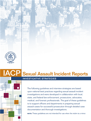 Image for Sexual Assault Incident Reports: Investigative Strategies