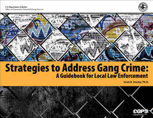 Image for Strategies to Address Gang Crime: A Guidebook for Local Law Enforcement