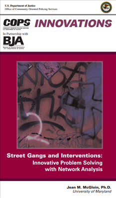 Image for Street Gangs and Interventions: Innovative Problem Solving with Network Analysis