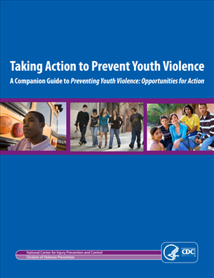 Image for Taking Action to Prevent Youth Violence - A Companion Guide to Preventing Youth Violence: Opportunities for Action