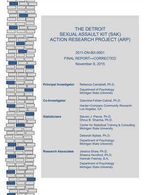 Image for The Detroit Sexual Assault Kit (SAK) Action Research Project Final Report