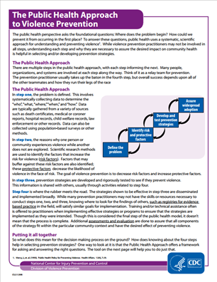 Image for The Public Health Approach to Violence Prevention