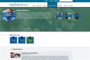 Image for VALOR Spotlight on Safety: Mental Wellness