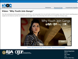 Image for Why Youth Join Gangs