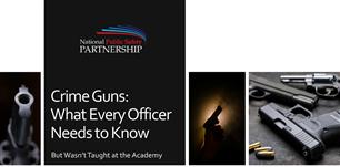 Image for PSP Webinar: Crime Guns 101